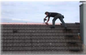 dachschutz dachreinigung kein dachmoos dacherneuerung mit nuernbergerfirst der profi f r ihr